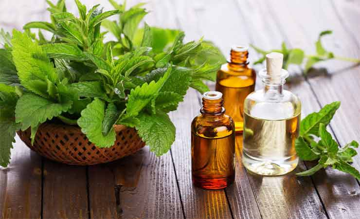 Pakistani home remedies for acne by tea tree oil
